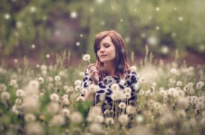 Woman in a field of puffy dandelion seed heads